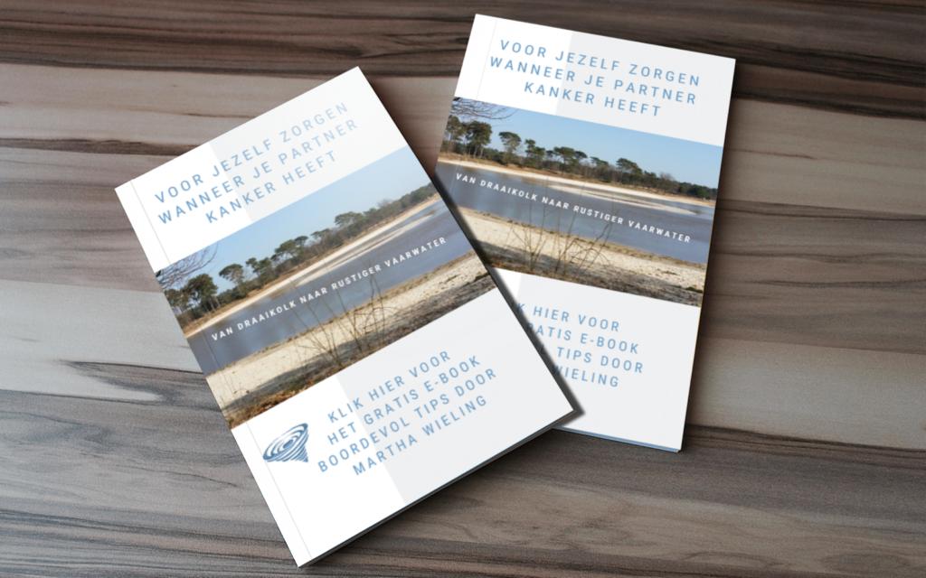 Kosten, clienten ontvangen het e-book gratis, een op een begeleiding of lotgenotencontact